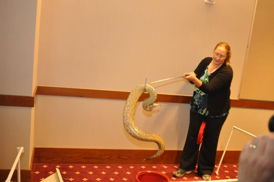 Veterinarian handling a large yellow snake